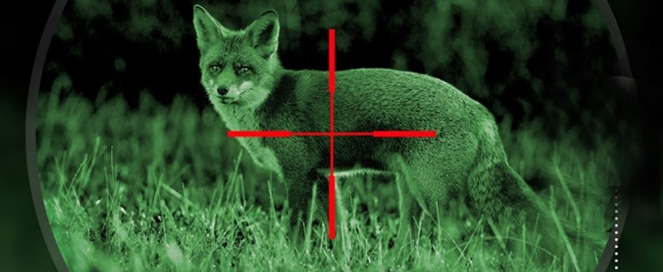 Why Should You Buy a Scope for Night Hunting Coyotes?